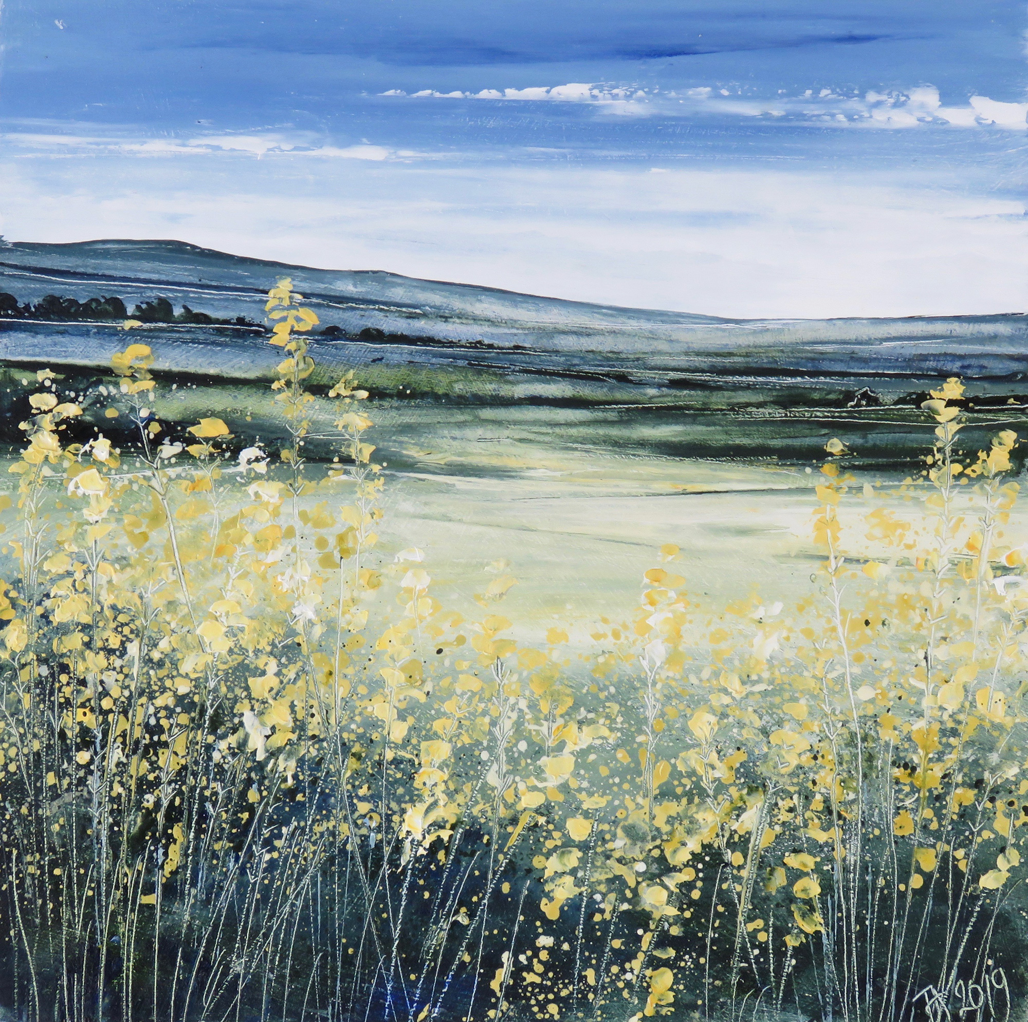 Yellow Field by Tess Armitage