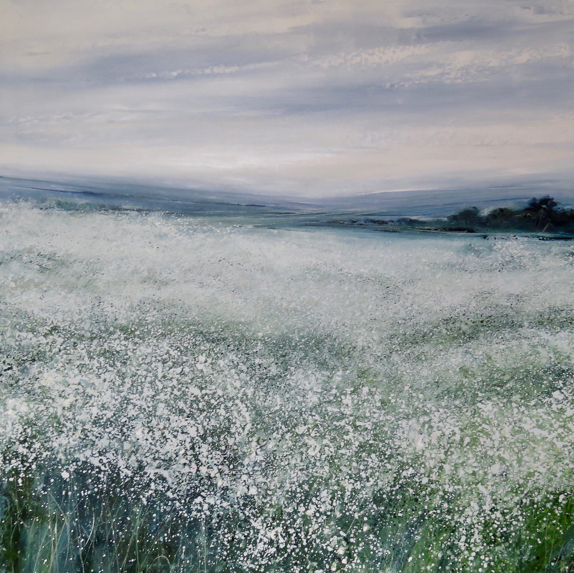 Chamomile by Tess Armitage